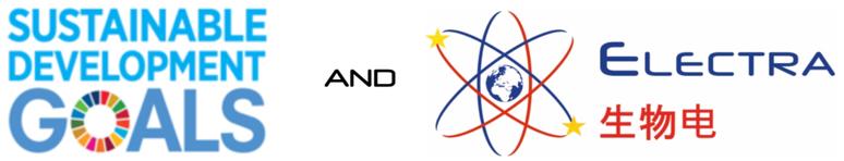SDG-ELECTRA